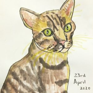 Yuya Kubota | Hotaru the Cat | Open Walls 2020 | Java Creative Cafe